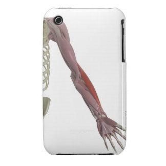 Brachioradialis Case-Mate iPhone 3 Cases