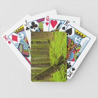 Bracken fern and redwood sorrel bicycle playing cards