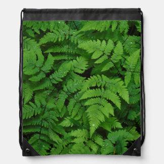 Bracken fern with rain drops, Washington State Drawstring Backpack