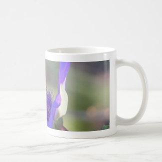 Bracted spiderwort flower with bee classic white coffee mug