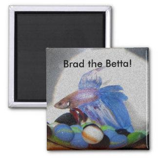 ¡Brad el Betta! Iman