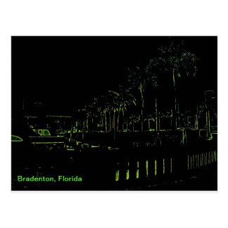 Bradenton Florida Marina Postcard