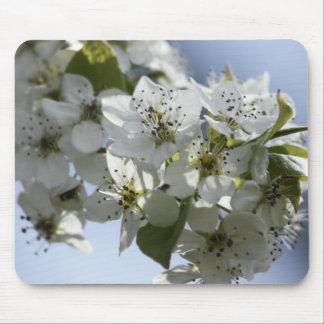 Bradford Pear Blossom Mouse Pad