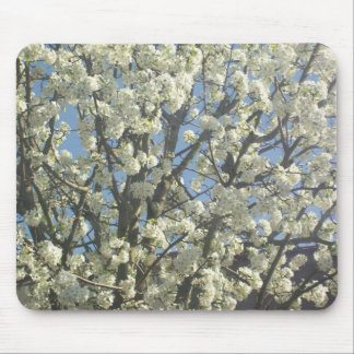 Bradford Pear Blossoms in Spring Mousepad