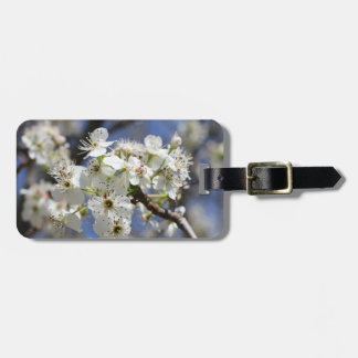BRADFORD PEAR BLOSSOMS TAG FOR BAGS