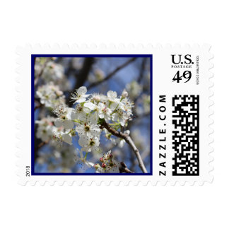 BRADFORD PEAR BLOSSOMS STAMPS