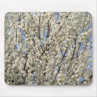 Bradford Pear Tree Bloom Mouse Mat