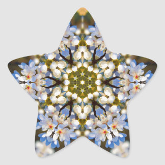 Bradford Pear Tree Blossom Kaleidoscope Star Sticker
