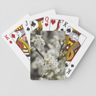 Bradford Select Focus Playing Cards