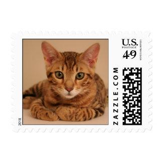 Brady Postage Stamp