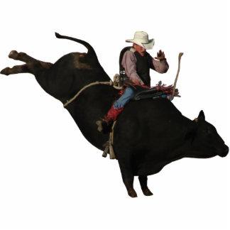 Brady y toro fotoescultura vertical