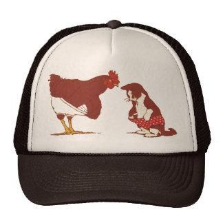 Bragas del pollo y del gato gorras