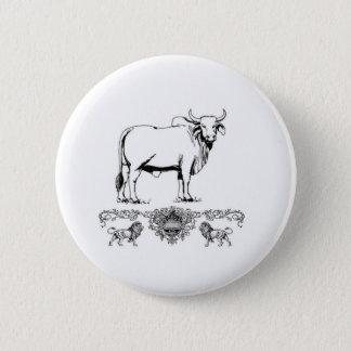 Brahma bull display pinback button