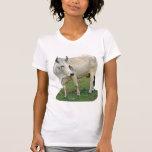 Brahman Cow Shirt