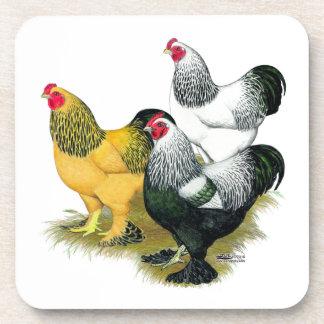 Brahmas Three Roosters Drink Coaster