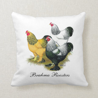 Brahmas Three Roosters Throw Pillow