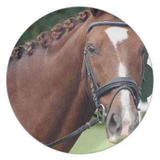 Braided Horse Mane Plate