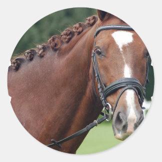 Braided Horse Mane Stickers
