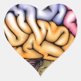 Brain anatomy diagram heart sticker