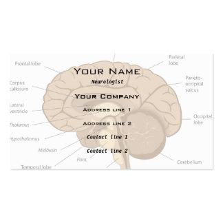 Brain anatomy neurologist Business Card