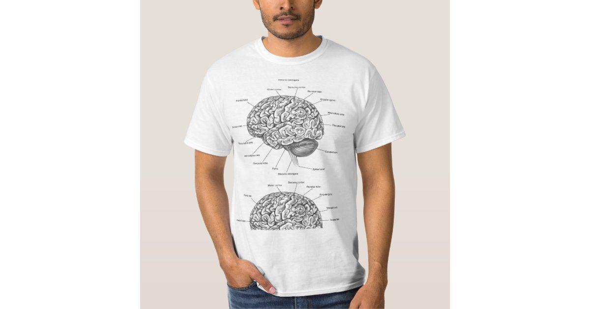 Brain Anatomy T Shirt Zazzle