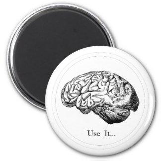 Brain Anatomy - Use It Magnet