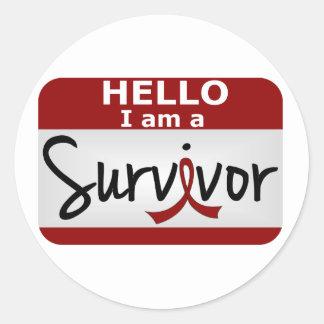 Brain Aneurysm Survivor 24.png Classic Round Sticker