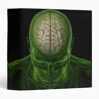 Brain Arteries 3 Ring Binder