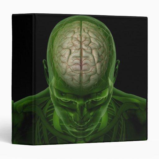 Brain Arteries Vinyl Binders