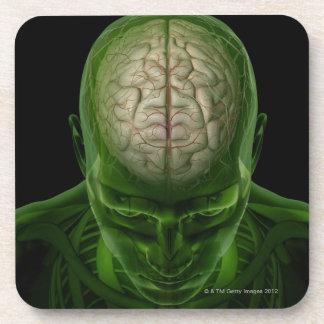 Brain Arteries Beverage Coasters
