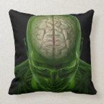 Brain Arteries Pillows