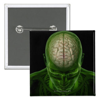 Brain Arteries Pinback Button