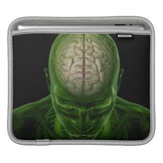 Brain Arteries Sleeves For iPads