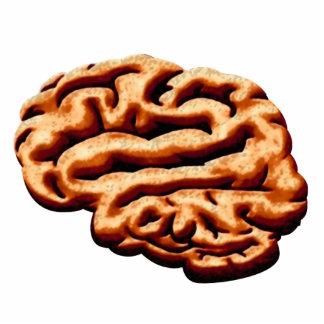 Brain Brainz Zombie Food Halloween Accessories Statuette