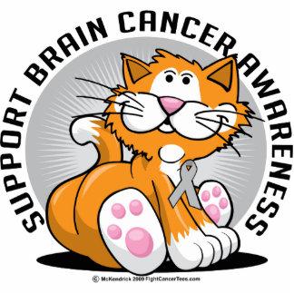 Brain Cancer Cat Statuette