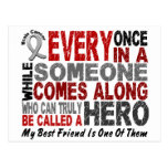 Brain Cancer HERO Best Friend Post Cards