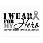 Brain Cancer Hero Grey Ribbon Postcard
