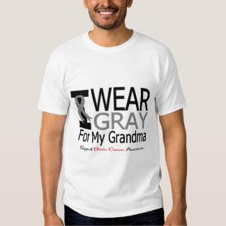 Brain Cancer I Wear Gray Ribbon For My Grandma Tee Shirt