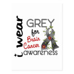 Brain Cancer I Wear Grey For Awareness 43 Post Cards