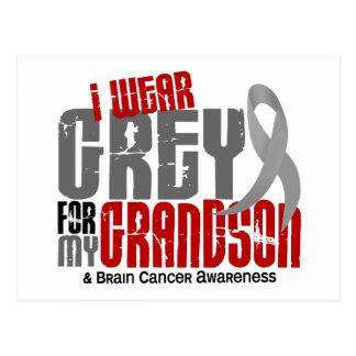 Brain Cancer I Wear Grey For My Grandson 6.2 Postcard