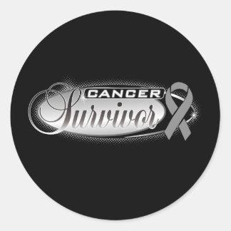 Brain Cancer Survivor Round Sticker