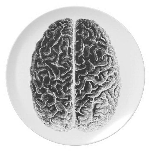 Brain Dinner Plates