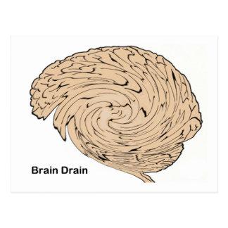 Brain Drain Postcard