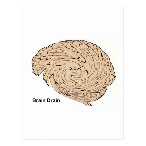 Brain Drain Postcards