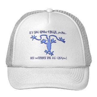 Brain Freeze! - Hat #1