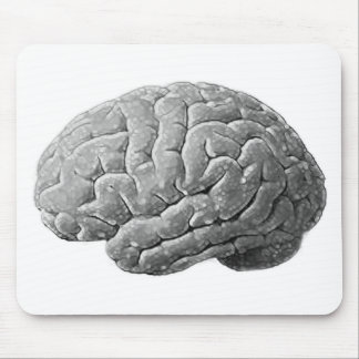 Brain Gifts Mouse Pad