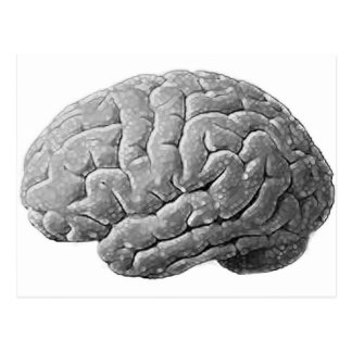 Brain Gifts Postcard