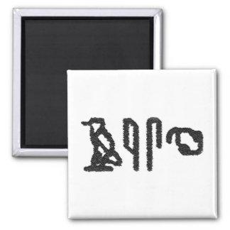Brain Hieroglyphics Fridge Magnets