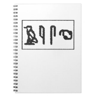 Brain Hieroglyphics Spiral Notebook