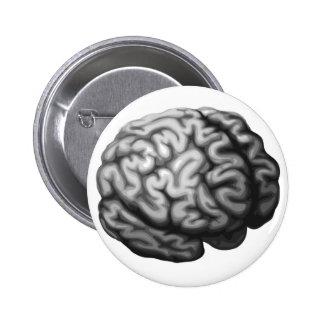Brain illustration pinback button